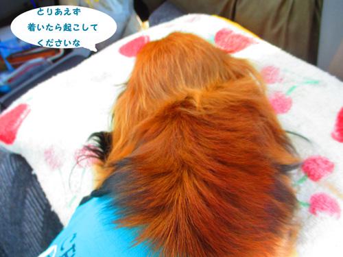 2016-4-hitachi2.jpg