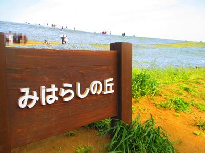 2016-4-hitachi34.jpg
