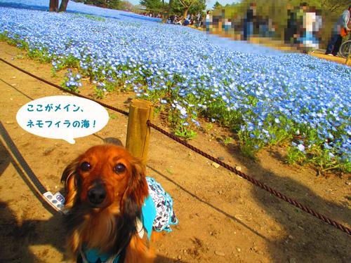 2016-4-hitachi37.jpg