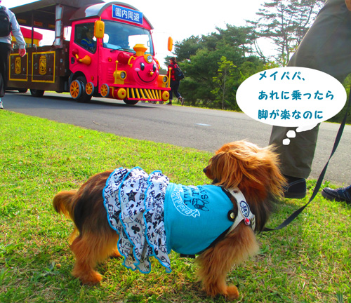 2016-4-hitachi54.jpg