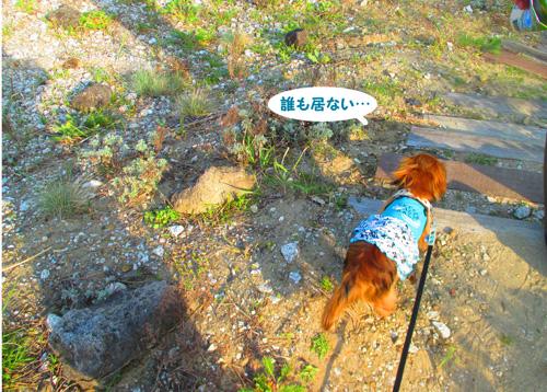 2016-4-hitachi59.jpg