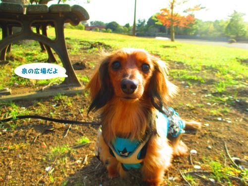 2016-4-hitachi62.jpg