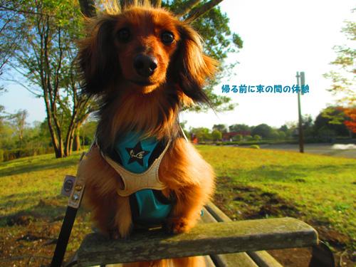 2016-4-hitachi64.jpg