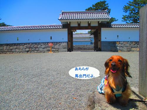 2016-5-odawara18.jpg