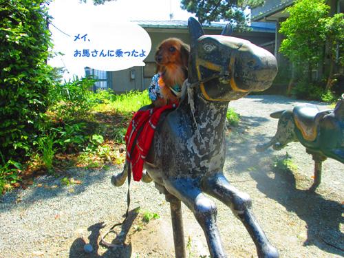2016-5-odawara58.jpg