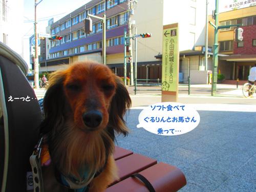 2016-5-odawara65.jpg