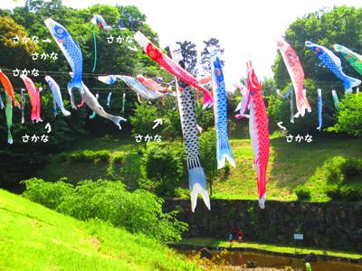2016-5-satoyama13.jpg