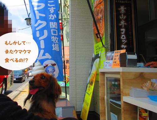 2016-6-kamakura19.jpg