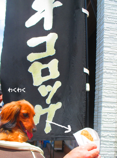 2016-6-kamakura21.jpg