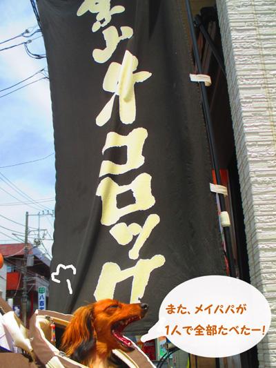 2016-6-kamakura22.jpg