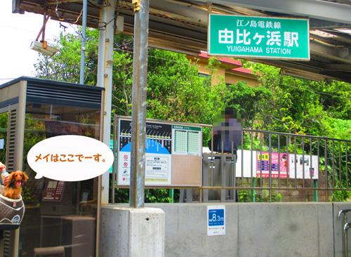2016-6-kamakura23.jpg
