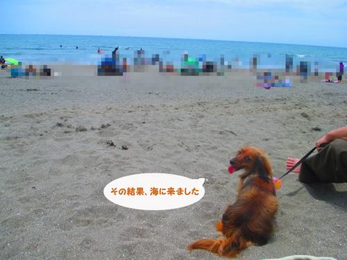 2016-6-kamakura30.jpg