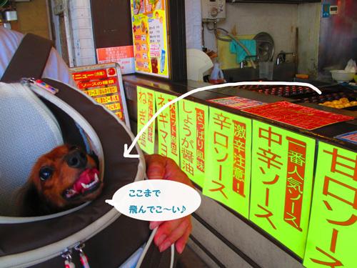 2016-8-asakusa16_2016092715054156c.jpg