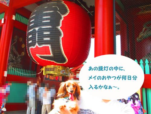 2016-8-asakusa62.jpg
