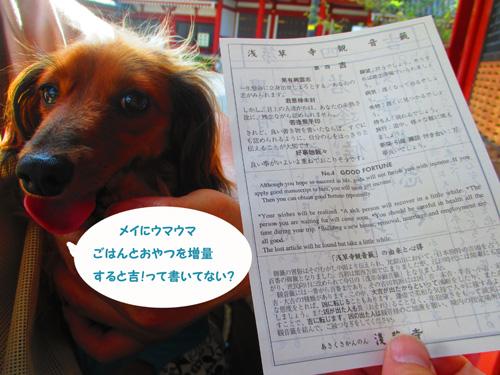 2016-8-asakusa68.jpg
