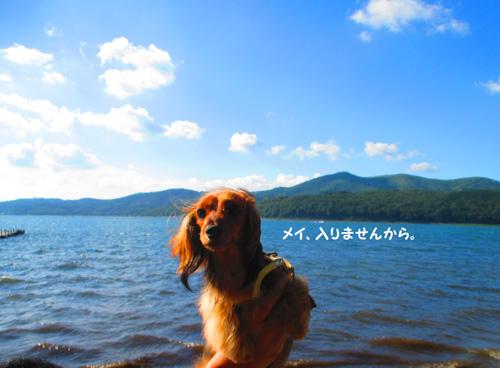2016-8-yamanakako58.jpg