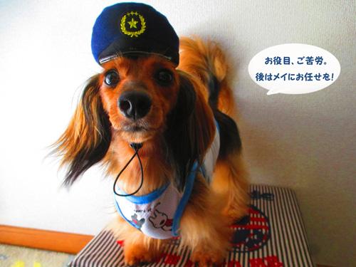 omawari-san14.jpg
