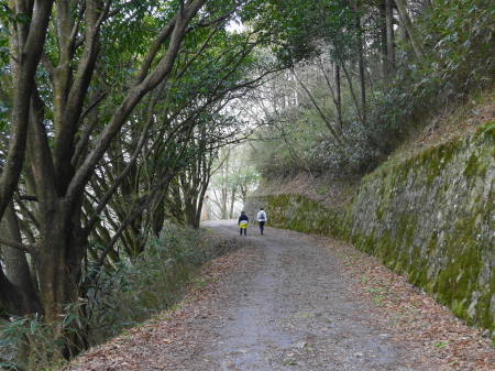 芦ノ湖沿い散策道