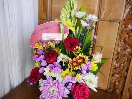 ウェルカムバックの花