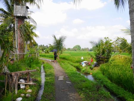 農道をゆっくり歩く