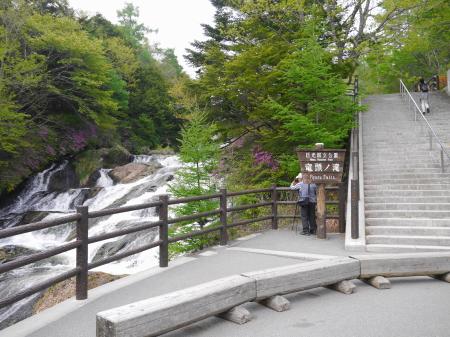 竜頭の滝 散策道
