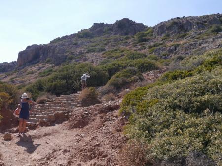 石段を登っていく