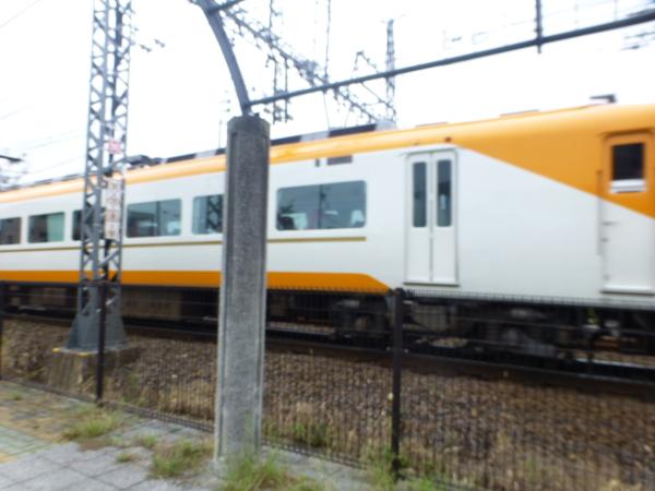 P1100144.jpg