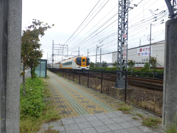 P1100145.jpg
