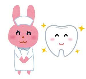 うさぎNsと歯