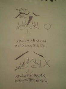 美容師のための【裏教科書】ハイヤマカシ-100114_1812~0001.jpg