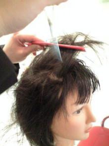 美容師のための【裏教科書】ハイヤマカシ-100310_1451~0001.jpg