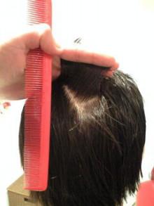 美容師のための【裏教科書】ハイヤマカシ-100314_1733~0002.jpg