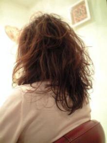 美容師のための【裏教科書】ハイヤマカシ-100501_2032~0002.jpg