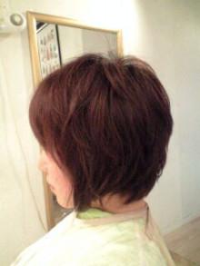 美容師のための【裏教科書】ハイヤマカシ-100527_1751~0001.jpg
