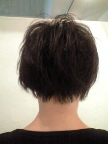 美容師のための【裏教科書】ハイヤマカシ-100529_1141~0001.jpg