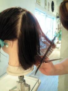 美容師のための【裏教科書】ハイヤマカシ-101001_1651~0001.jpg