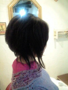 美容師のための【裏教科書】ハイヤマカシ-101104_1212~0003.jpg