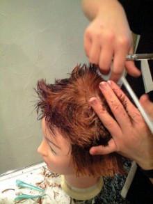 美容師のための【裏教科書】ハイヤマカシ-101117_1957~0002.jpg