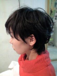 美容師のための【裏教科書】ハイヤマカシ-101212_1331~0001.jpg