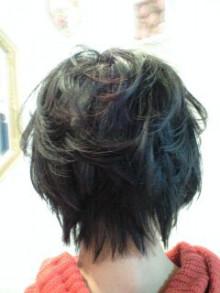 美容師のための【裏教科書】ハイヤマカシ-101212_1331~0002.jpg