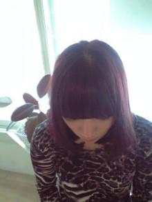 美容師のための【裏教科書】ハイヤマカシ-110116_1223~0002.jpg