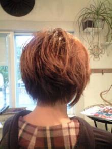 美容師のための【裏教科書】ハイヤマカシ-110510_1511~0001.jpg