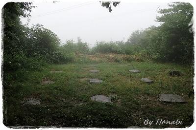 P7090065.jpg