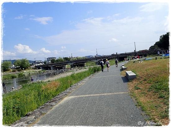P8160093.jpg