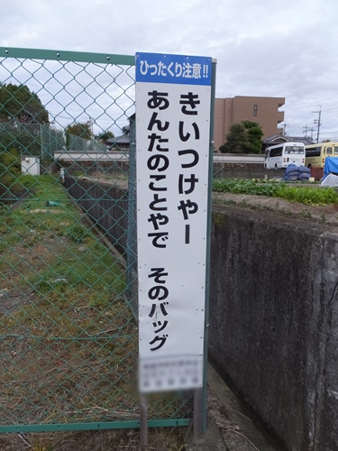 DSCF2293.jpg