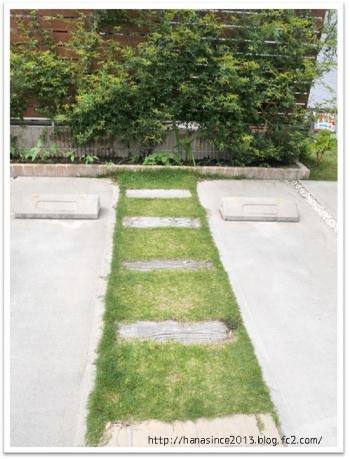 枕木と芝生2年目