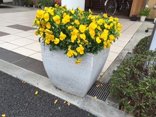 優っくり村_041016_0