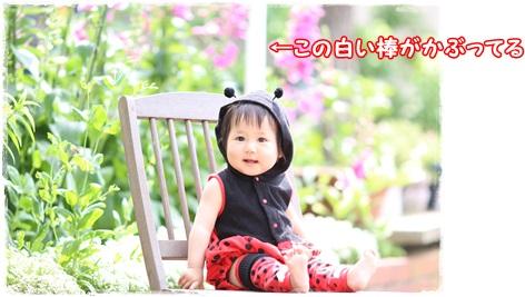 IMG_4538_201605151632178f2.jpg