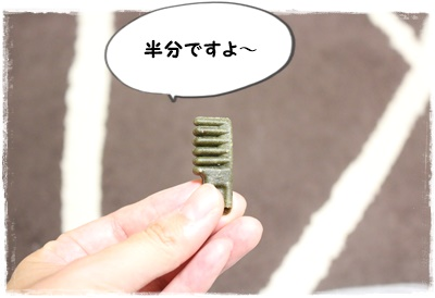 IMG_6202.jpg