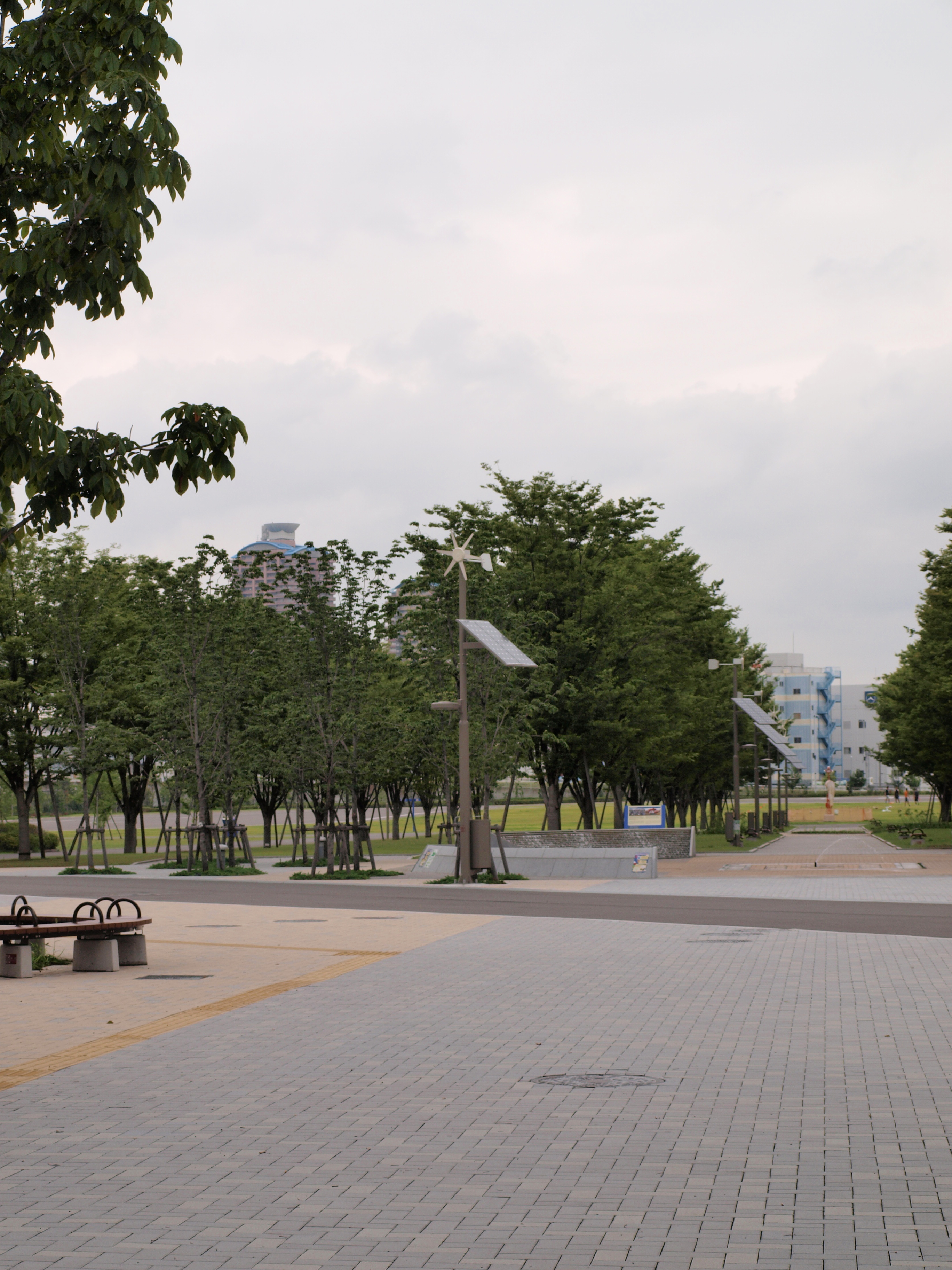 東京臨海広域防災公園1